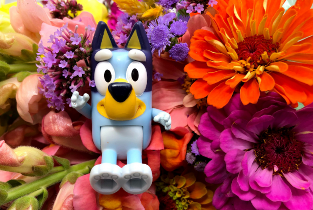 blue toy dog in front of colorful flowers